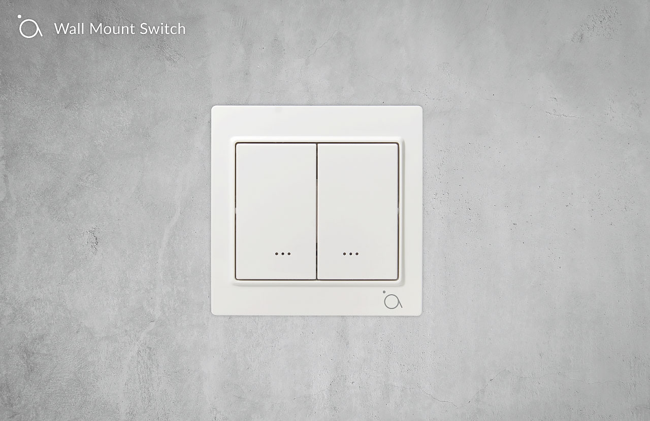 Wall Mount Switch